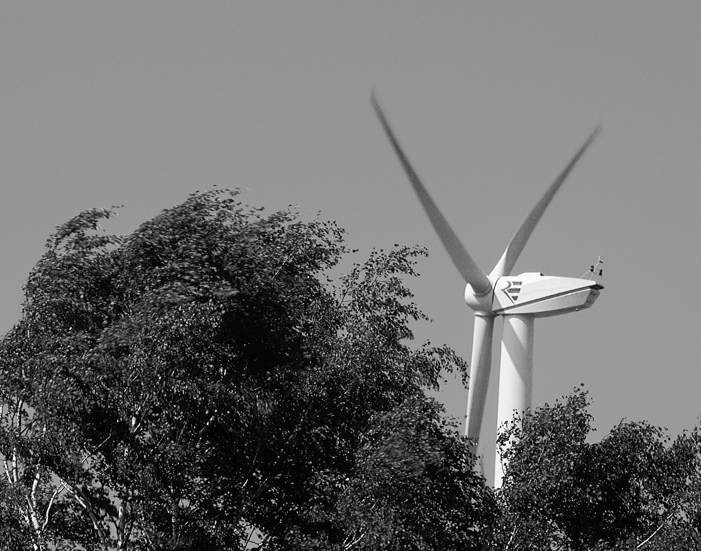 Windwerk image